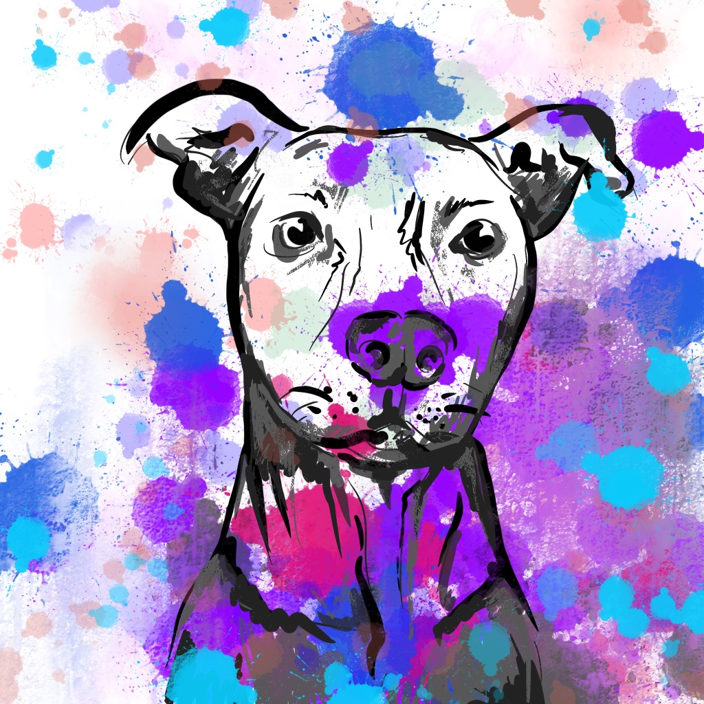 Custom artwork abstract dog