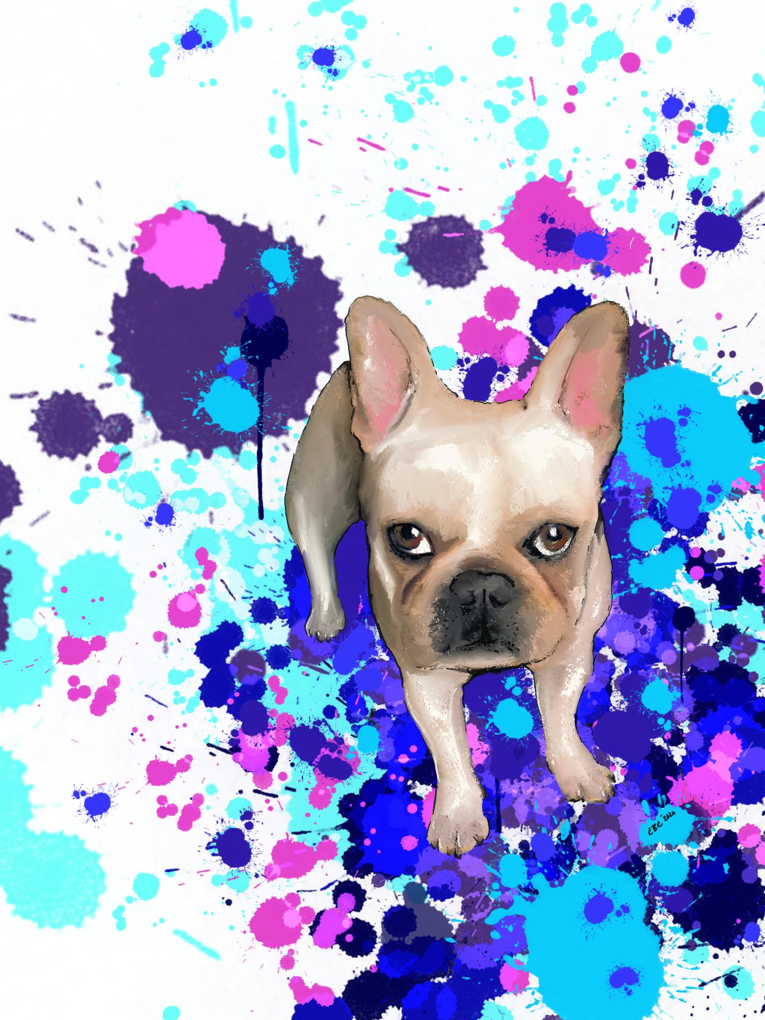 Pet Art by CBCInked